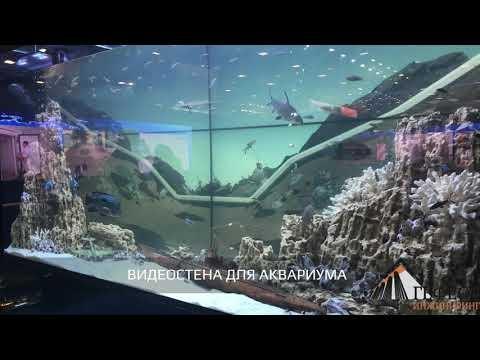 В г.Санкт-Петербург (Экспофорум) прошел ежегодный Петербургский Международный Газовый Форум